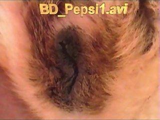 Bd Pepsi